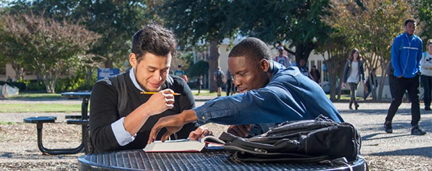 Students working together outside of Watson Library.